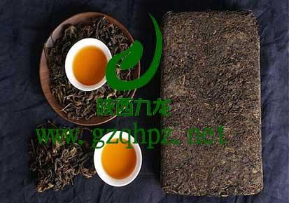 (全天)泾阳茯茶